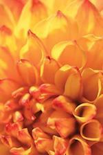 Journal Floral Orange Dahlia Flower