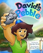 David's Pebble
