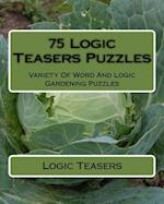 75 Logic Teasers Puzzles