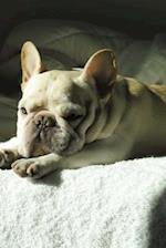 Sweet French Bulldog Pup on the Bed Journal