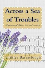 Across a Sea of Troubles