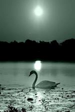Journal Black White Peaceful Swan Photo
