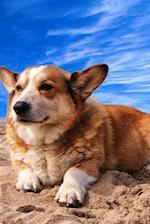 Happy Welsh Corgi Puppy Dog on the Beach Journal