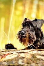 Adorable Black Miniature Schnauzer Puppy Dog Peeking Over a Log Journal