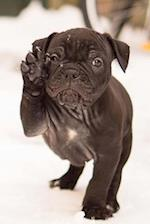 A Precious Little Black Bulldog Puppy in the Snow Journal