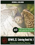 Owls Coloring Book for Adults Relaxation Vol.1 Meditation Blessing 40 Drawing