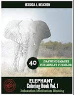 Elephant Coloring Book for Adults Relaxation Vol.1 Meditation Blessing 40 Drawi