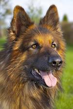 Ever So Handsome Shepherd Dog Journal