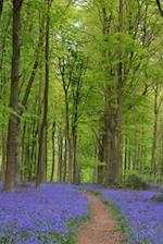 A Path Through the Bluebells in Spring Journal