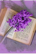 A Purple Hyacinth Flower on a Vintage Book Journal