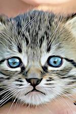 Drawing of a Sweet Little Striped Tabby Kitten Illustration Art Journal