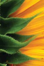 Journal Sunflower Petals Close Up