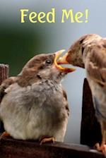 Journal Bird Feeding Bird