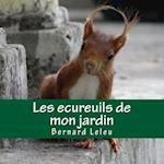 Les Ecureuils de Mon Jardin