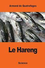 Le Hareng