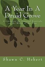 A Year in a Druid Grove