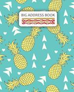 Big Address Book