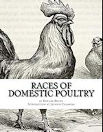Races of Domestic Poultry