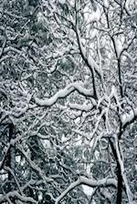 Journal Twisted Winter Branches with Snow