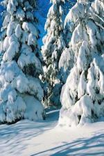 Journal Snow Covered Evergreens