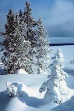 Journal Beautiful Winter Scene