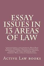 Essay Issues in 13 Areas of Law