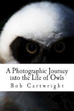 A Photographic Journey Into the Life of Owls