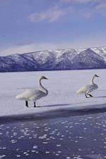 Journal Geese Frozen Winter Lake