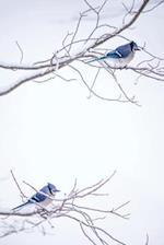 Blue Jays Bird Wildlife Journal to Write in Notes