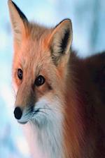 Journal Red Fox Winter