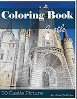 Castle 30 Pictures, Sketch Grey Scale Coloring Book for Kids Adults and Grown Ups