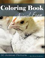 Farm Animal 30 Pictures, Sketch Grey Scale Coloring Book for Kids Adults and Grown Ups