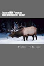Journal Elk Forages Through Winter Snow