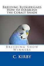 Breeding Budgerigars How to Establish the Cobalt Shade