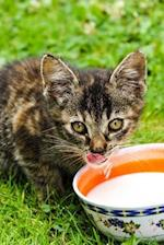 Darling Little Tabby Kitten with a Bowl of Cream Journal