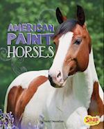 American Paint Horses (Horse Breeds)