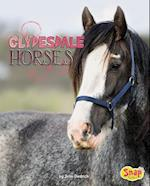 Clydesdale Horses (Horse Breeds)