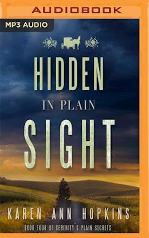 Lydbog, CD Hidden in Plain Sight af Karen Ann Hopkins