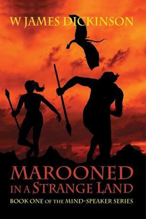 Marooned in a Strange Land af W James Dickinson