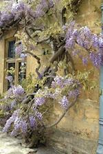 An Exquisite Purple Wisteria Tree Against a Rustic Brick Wall Journal