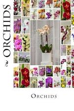 Orchids (Journal / Notebook)