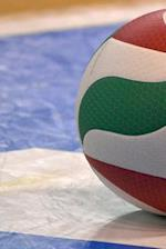 Volleyball on the Court Sports and Recreation Journal
