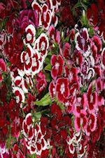 Floral Journal Pink Dianthus