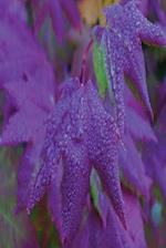 Floral Journal Raindrops Purple Leaves