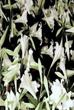 Floral Journal Scattered White Lilies