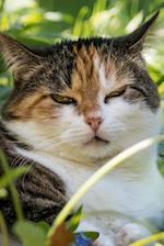 Sleepy Cat in the Garden Pet Journal