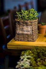 A Cool Green Succulent Plant in a Rustic Basket Container Journal