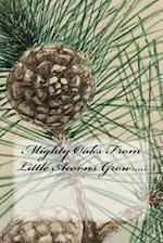 Mighty Oaks from Little Acorns Grow.....