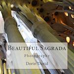 Beautiful Sagrada