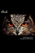 Owls (Journal / Notebook)